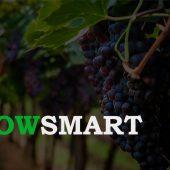 GrowSmart – Protocolo de Aplicación para la Vid, Olivos y Frutales.