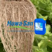 ¿Cuál es la diferencia entre Huwa San y un peróxido de hidrógeno común?